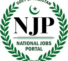 njp jobs logo gigspk
