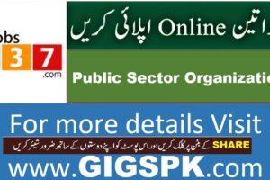 career jobs 1737 Apply Online gigspk