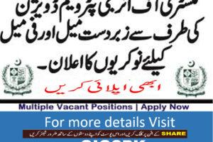 energy department petroleum division jobs