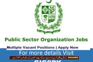 Public-Sector-Organization-jobs