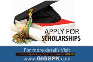 Top-Scholarship-in-Pakistan-Scholarships-for-Pakistani-Students