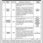 Public Sector Organization Sindh Latest Jobs 2021 Program Management Unit Hyderabad